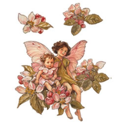 W13412 Flower Fairies